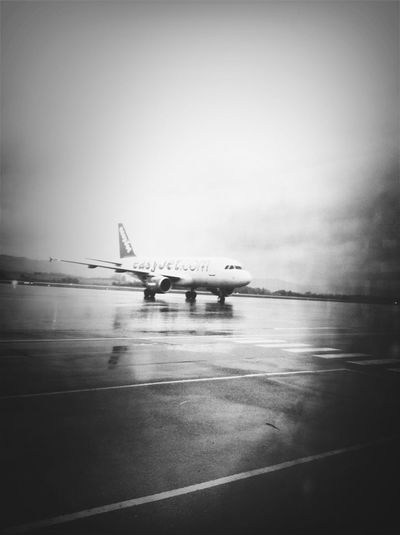 At The Airport Bw_collection