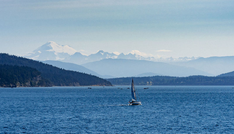 Sailboat and Mt. Baker Cascade Mountains Pacific Northwest  Pacific Northwest Beauty Recreational Boat Beauty In Nature Blue Boat Clear Sky Lopez Island Mountain Mountain Range Mt. Baker Negative Space No People Ocean Outdoors Sailboat Sailing San Juan Islands Scenics Sea Tranquil Scene Tranquility Transportation Water
