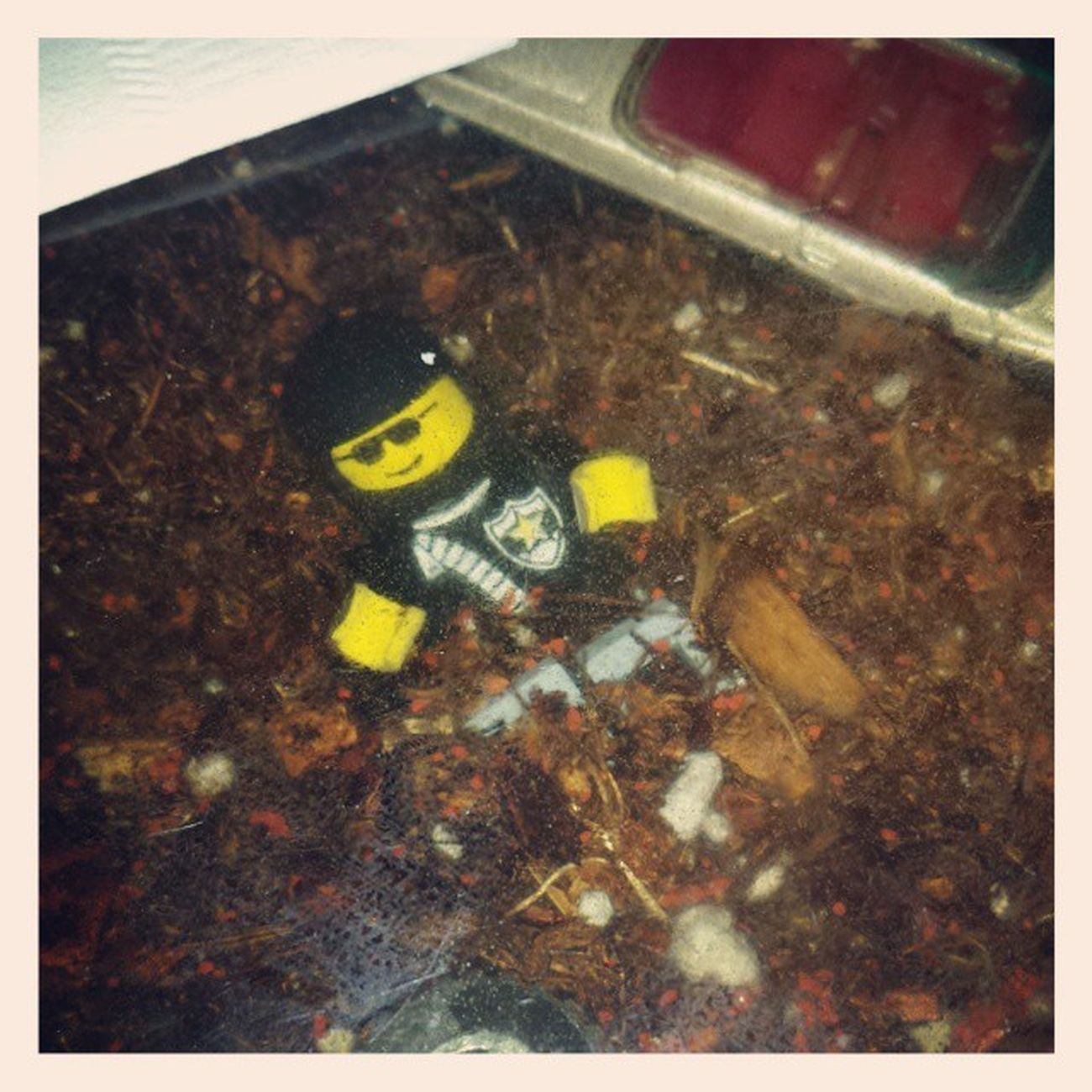 The things you find in diner tables in Oakland lol Legomoviedoe