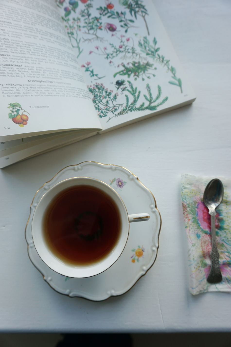 Book Books Botany Close-up Day Drink Food And Drink Freshness Indoors  No People Read Reading Refreshment Table Tea Tea - Hot Drink Tea Time Teapot