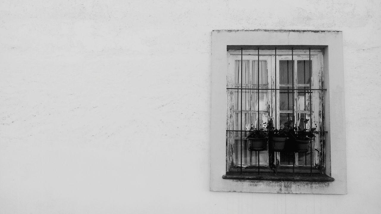 Window Cute Old Horta Das Figueiras Évora  Alentejo, Portugal