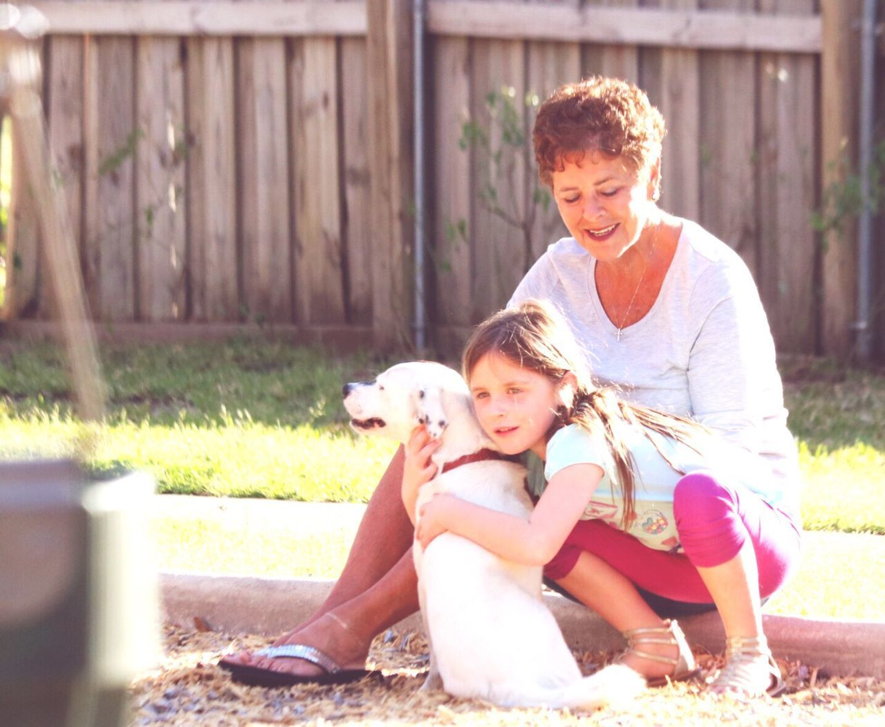 Grandmother Grand Daughter Family Retired Park Dog And Little Girl Seniors