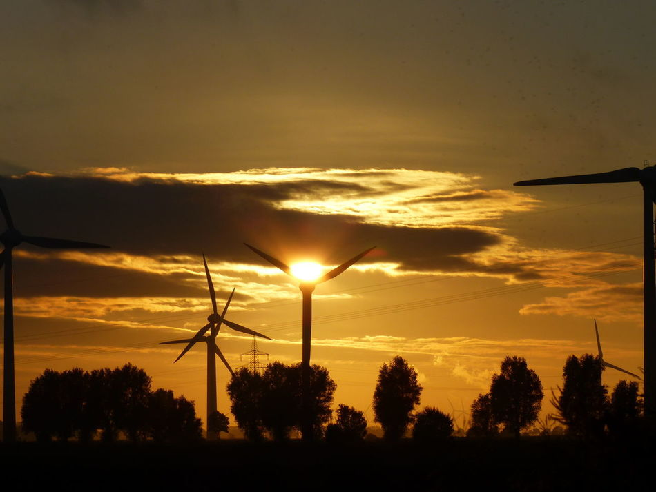 Sunset Tree Fuel And Power Generation Silhouette Back Lit Business Finance And Industry Wind Power Nature Sky Dramatic Sky Alternative Energy Tranquility Wind Turbine Technology No People Outdoors Electricity  Cloud - Sky Rural Scene Scenics Germany Ostfriesland Eastfrisia Emden Renewable Energy