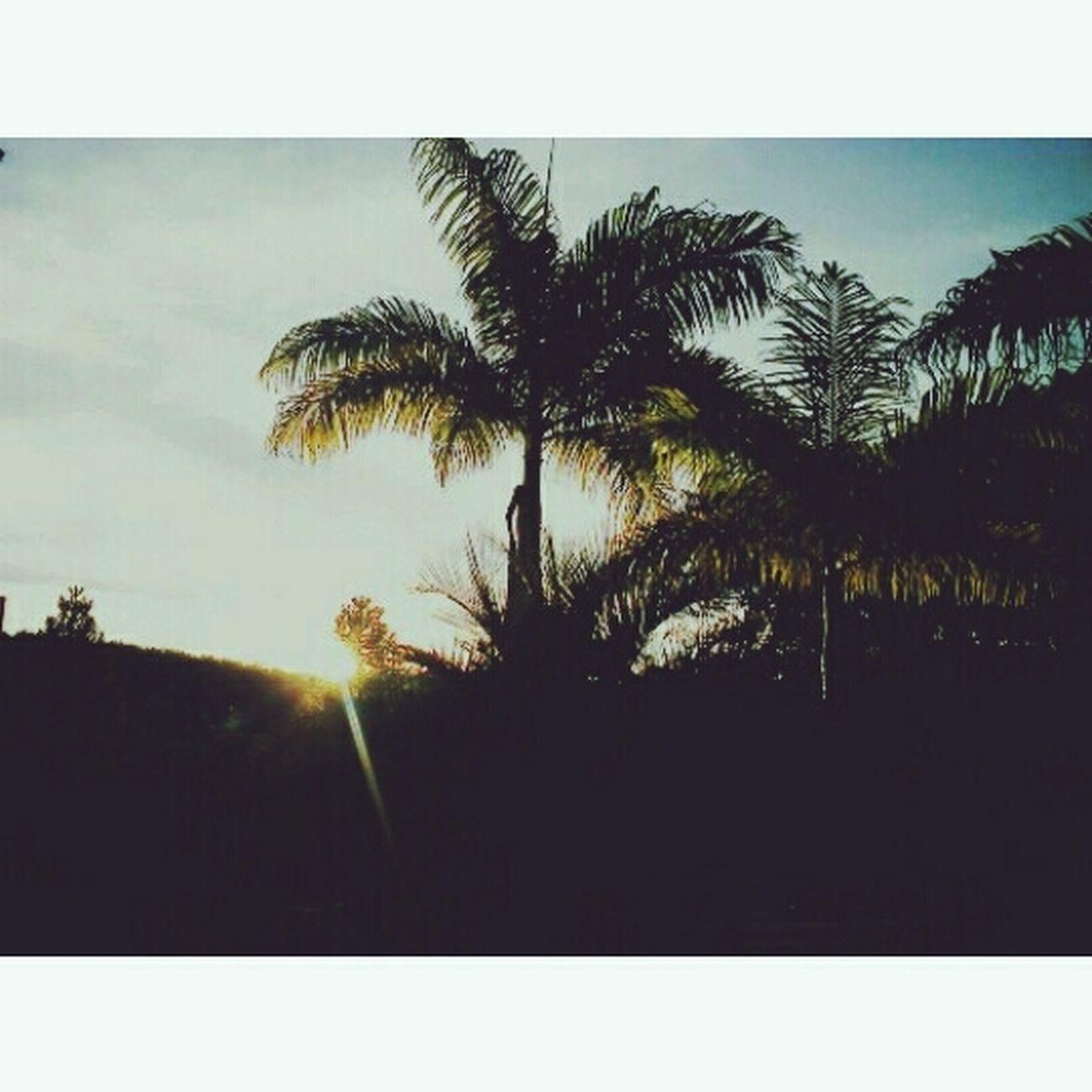 ☀☀ Sun Relaxing