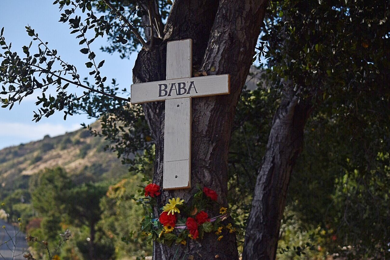 "Memories Never Die Tree Landscape In Memory Carmel Valley Ca. Flowers Of Rememberance Mountain Road Cross name of my grandmother "" Baba """
