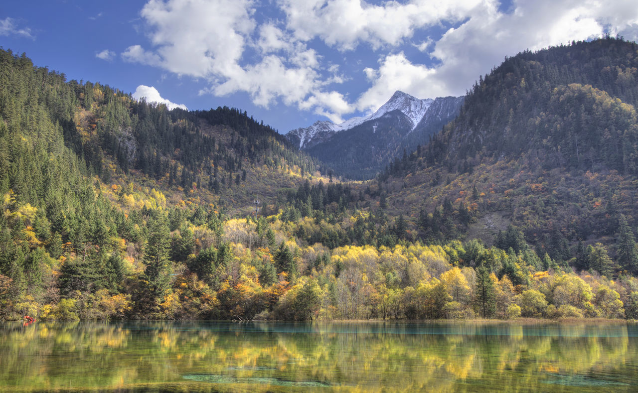 jiuzhaigou national park,sichuan province,china Autumn Beauty Beauty In Nature China Color Day Explore Forest JiuZhai Jiuzhaigou Lake Landscape Mountain Nature Nature No People Outdoors Scenics Sichuan Province Sky Travel Tree Valley Water