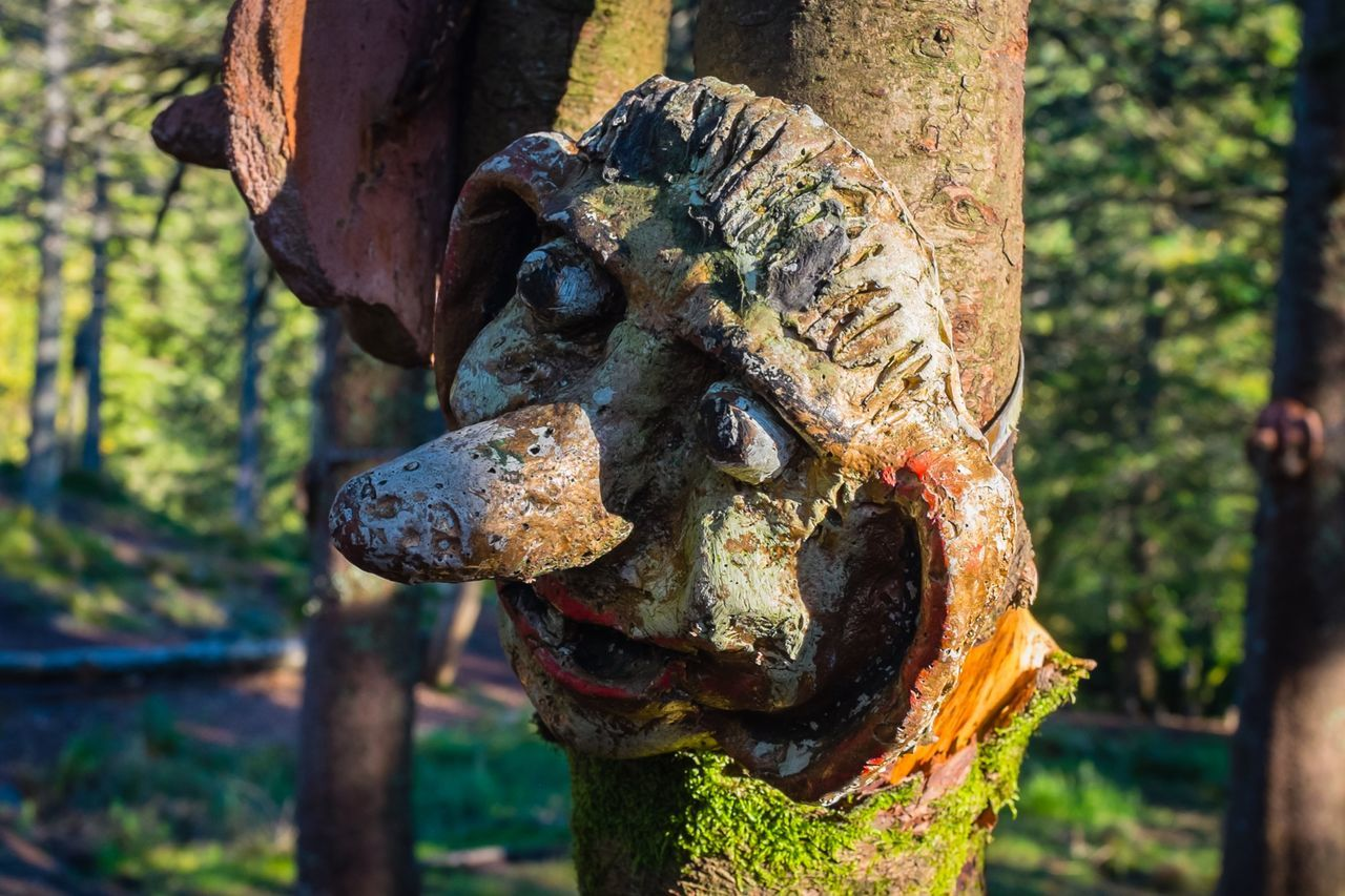 focus on foreground, rusty, no people, weathered, day, outdoors, close-up, tree trunk, tree, gargoyle, nature, statue, animal themes