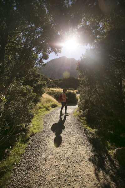 Hiking day Adventure Bright Casual Clothing Day Hi Landscape Leisure Activity Lens Flare Lifestyles Mount Cook Mountain Range Nature New Zealand Outdoors Sky Sun Sunbeam Sunlight Sunny The Way Forward Tracking Hidden Gems  Eyeemphoto Miles Away
