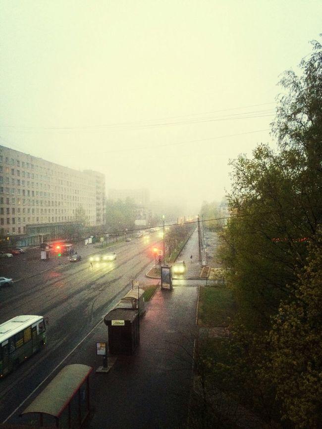 Saint Petersburg Rain