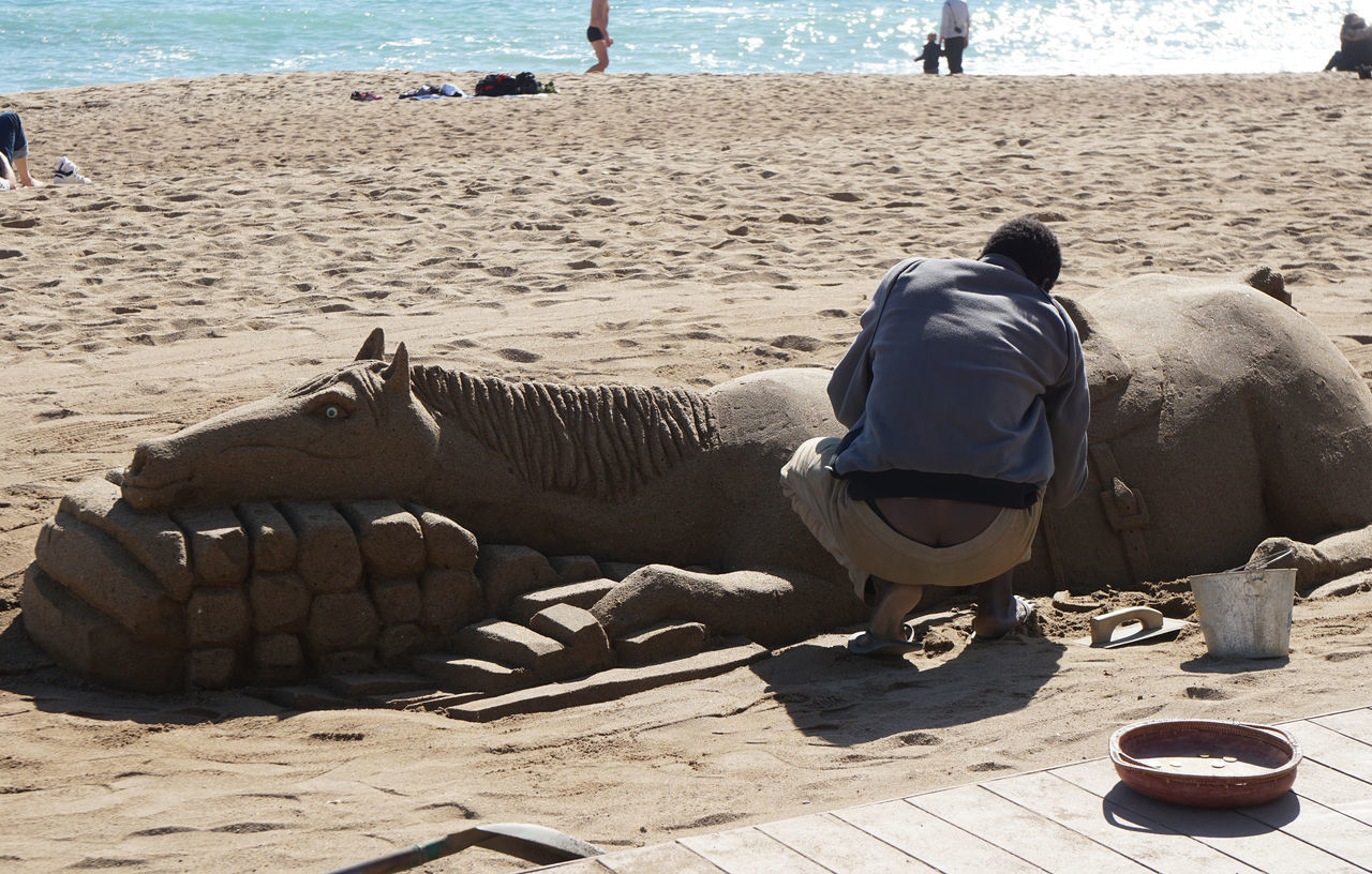 real people, sand, rear view, mammal, one animal, beach, domestic animals, day, men, outdoors, sitting, nature, one person, people