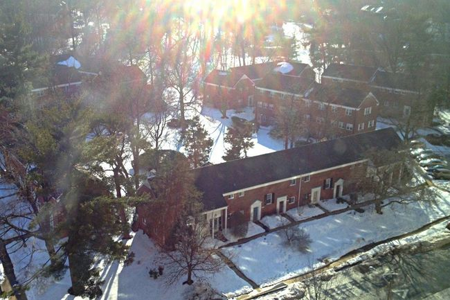 The View From My Window From My Window Bright Sunshiny Day Light And Shadow Light Spots Sunshine