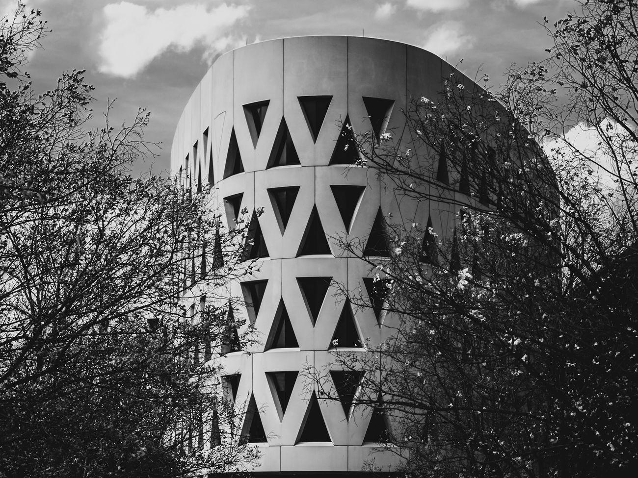 Architecture Black And White