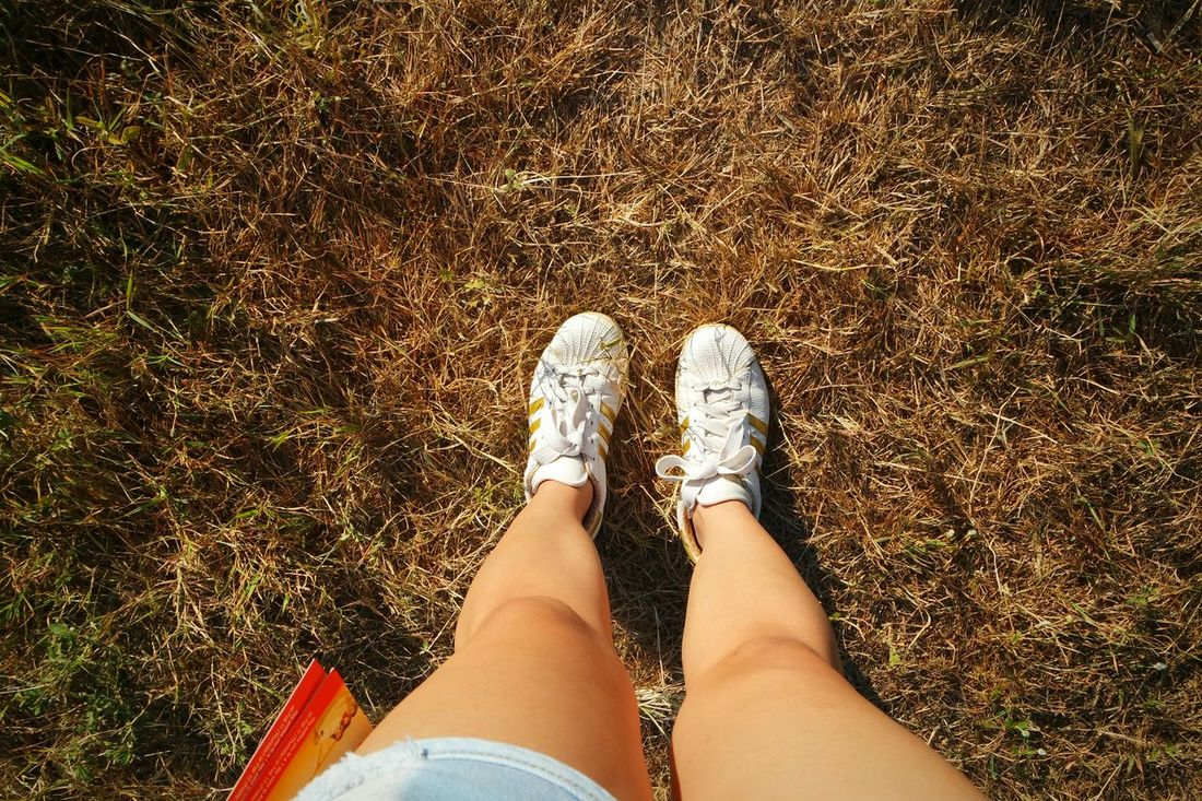 Exploring the day with these shoes 👣 PIHABF2016 Philippineinternationalhotairballoonfestival Clark Field Eyeem Philippines Fieldscape Adidassupertar Adidas Originals Hanging Out Check This Out That's Me Enjoying Life Relaxing Fields Of Gold Field