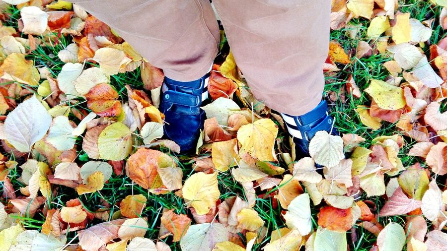 That's Me The Places I've Been Today Autumn 2015 November Check This Out Autumn Leaves Autumn🍁🍁🍁 Autumn Colors Autumn Collection Under My Feet