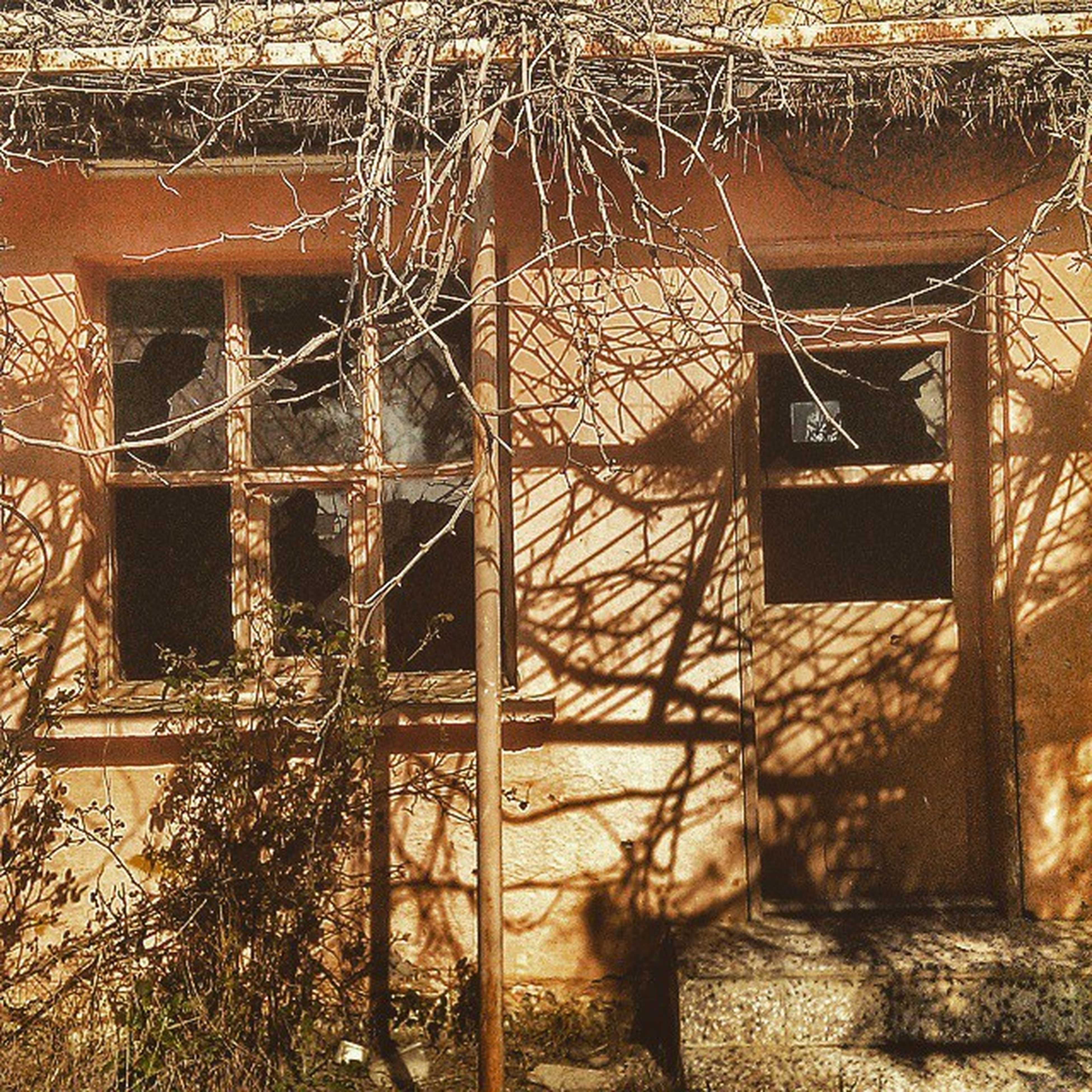 built structure, architecture, building exterior, damaged, window, abandoned, obsolete, run-down, old, deterioration, metal, house, weathered, bad condition, indoors, wall - building feature, glass - material, rusty, railing, day