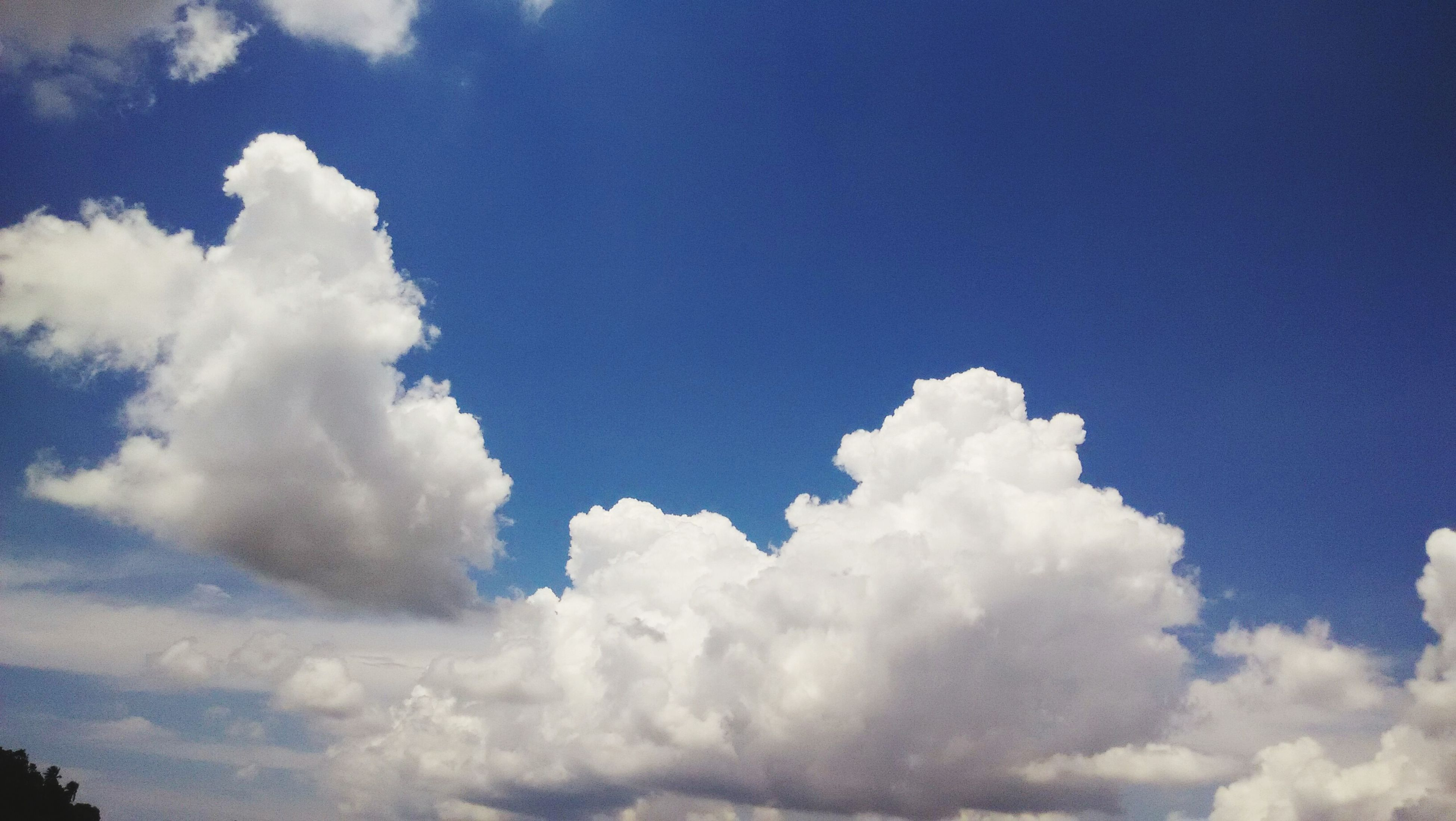 low angle view, blue, sky, beauty in nature, sky only, tranquility, nature, cloud - sky, scenics, tranquil scene, white color, cloud, cloudscape, copy space, white, idyllic, outdoors, day, no people, backgrounds