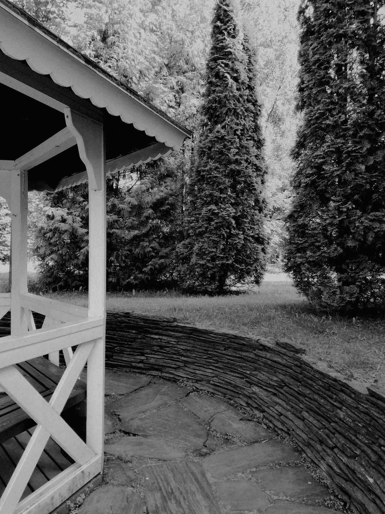 Built Structure Outdoors No People Park Stonewall Gazebo Lines, Shapes And Curves Black And White Nature Trees Day