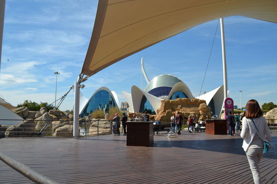 Travel Destinations Tourism Tourist People Aquarium Oceanographic Modern Valencia, Spain