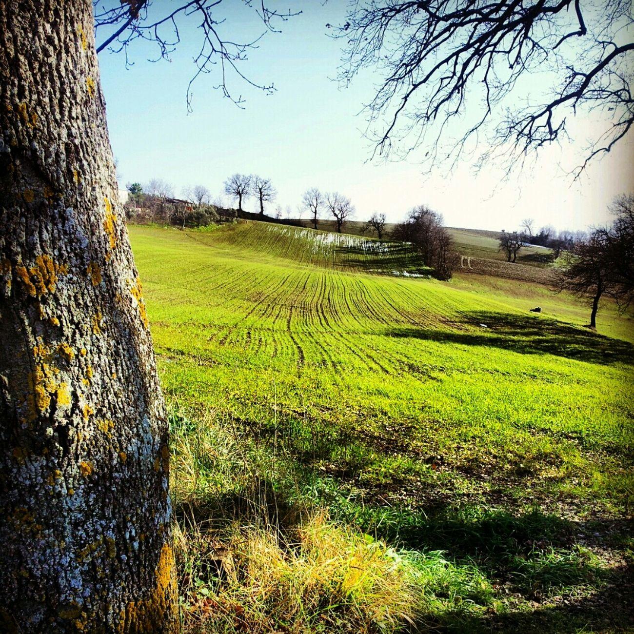 Rural Exploration