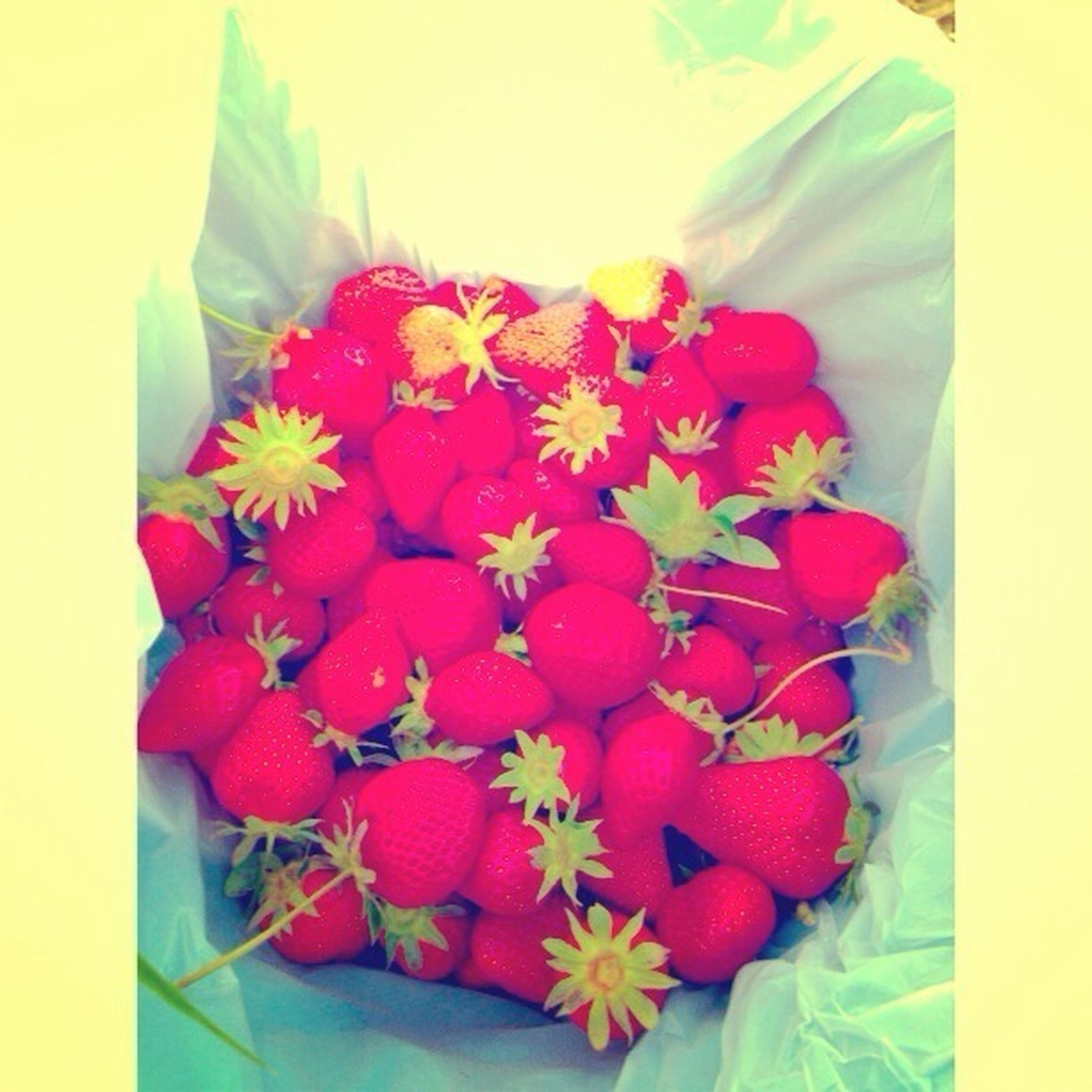 Strawberry.Loots