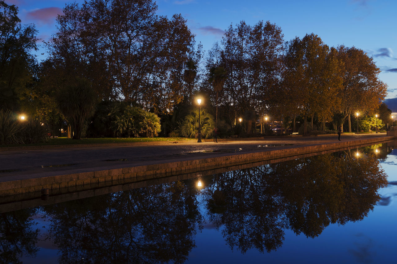 City Illuminated Madrd Night Outdoors Reflection Reflection Lake Sky SPAIN Travel Destinations Tree Water Agua Reflejos Water Reflections Water