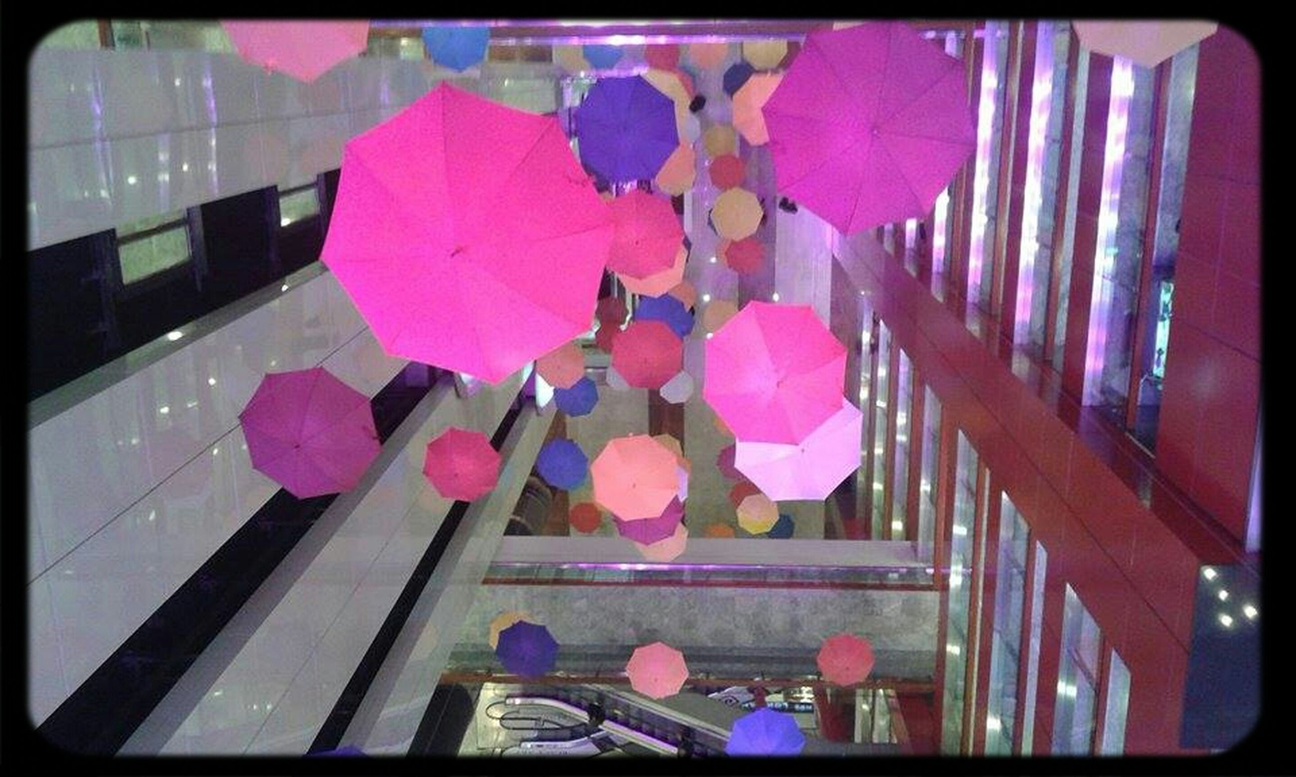 transfer print, auto post production filter, flower, pink color, umbrella, lifestyles, indoors, multi colored, leisure activity, fragility, built structure, day, building exterior, architecture, men, high angle view, person