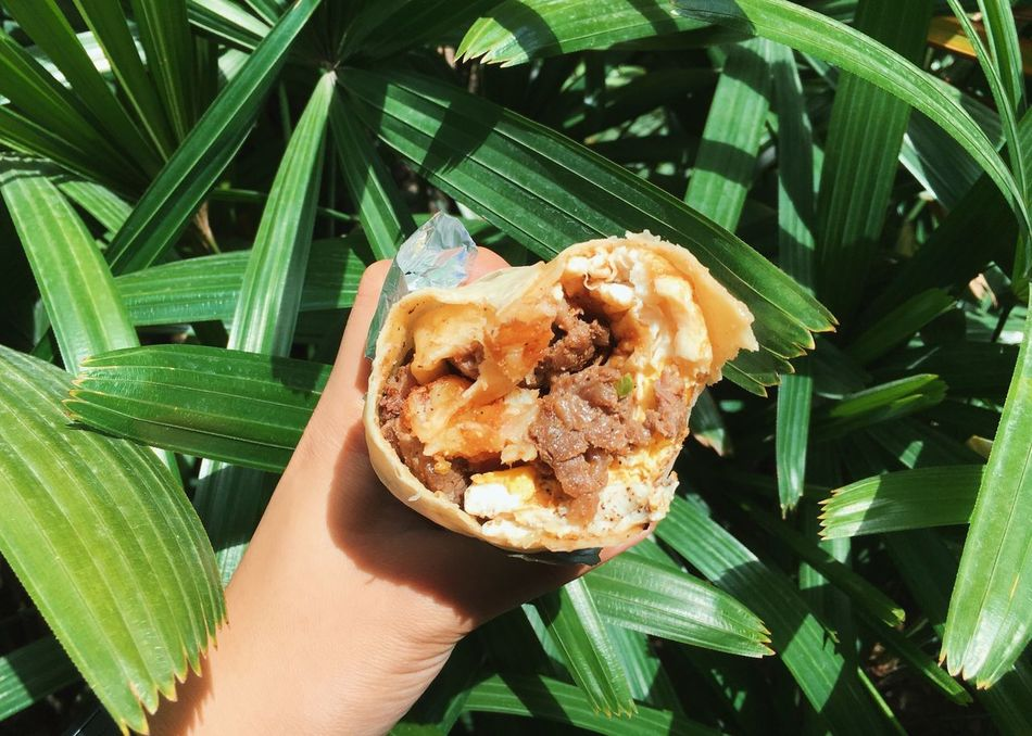 Breakfast Burrito Human Hand Food Leaf Human Body Part Holding Food And Drink One Person Freshness Green Color Plant Ready-to-eat Outdoors Day Healthy Eating Close-up Real People Nature