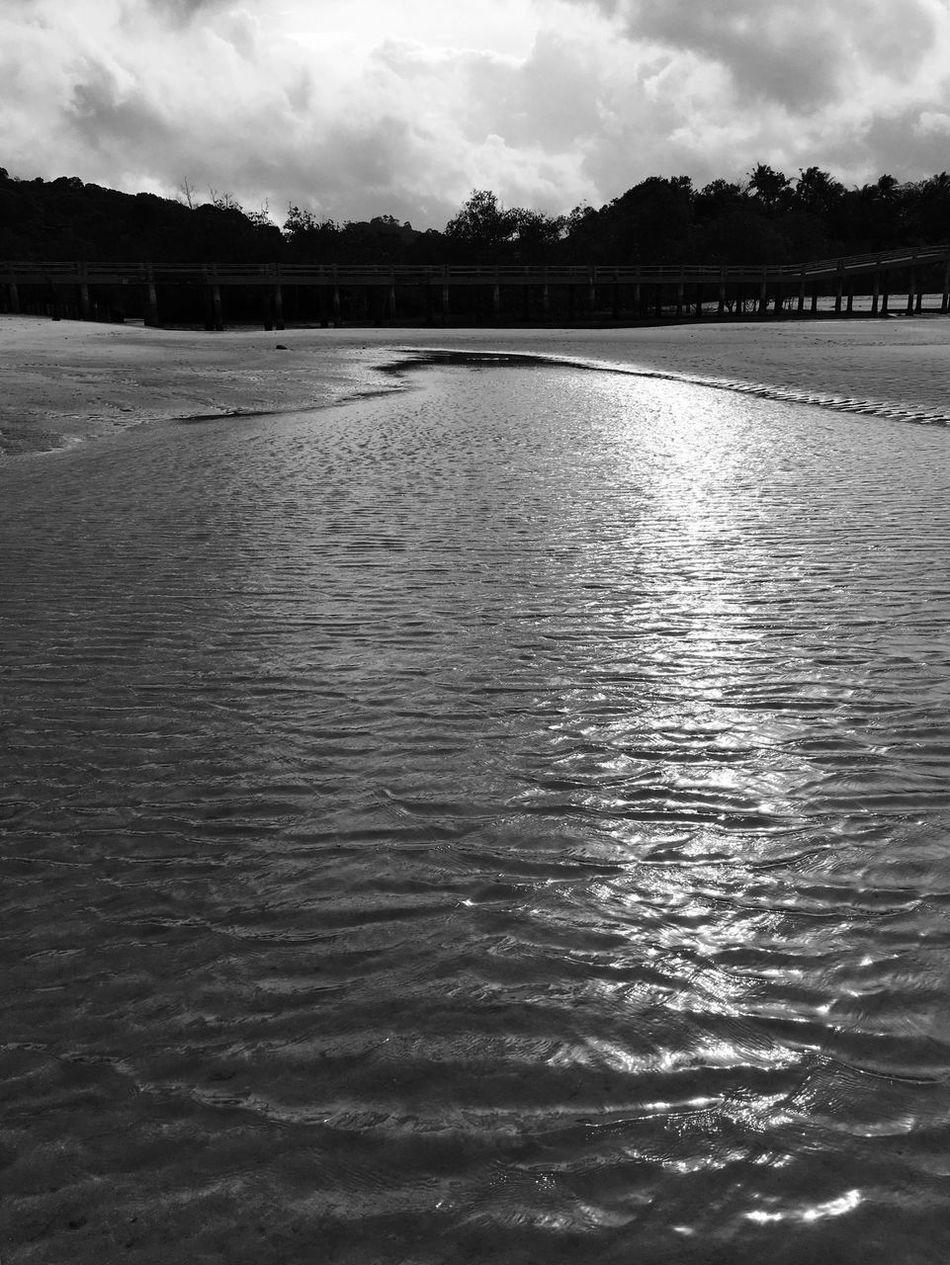 The Sea Sea Seaside Seascape Sea View Sea_collection Sand Sand Dune Sand & Sea Beach Beach Photography Sand Beach