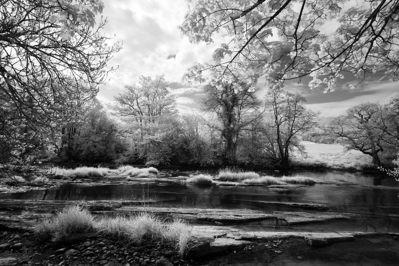 Riverside Meditation 01. Another from our holiday in Wales. This is part of the river Usk, lack of rain means the water level is very low. Fuji XPRO 1 ( converted) with Zeiss 12mm f2.8. Edit in Capture One pro. Beauty In Nature Black And White Contrast Creative Light And Shadow Exceptional Photographs EyeEm Gallery EyeEm Nature Lover From My Point Of View Infrared Light And Shadow Monochrome Nature Photography River Riverside Tranquil Scene Tranquility Trees And Sky Wales Water Water_collection