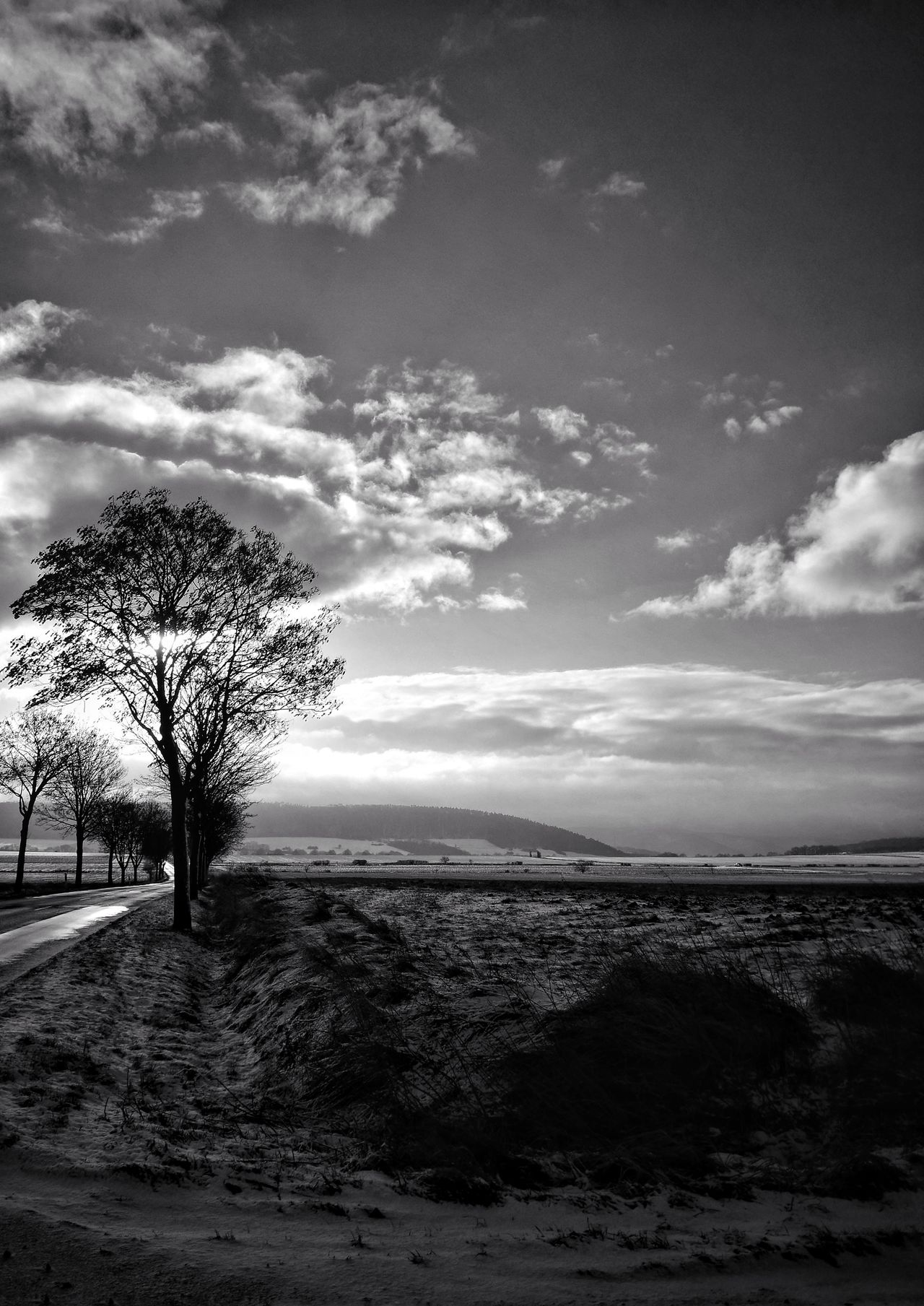 Nature Sky Tree Tranquility Idyllic Beauty In Nature No People Outdoors Growth Scenics Cloud - Sky Landscape Cold Temperature Winter Snow ❄ Blackandwhite Photography Monochrome Photography Black & White