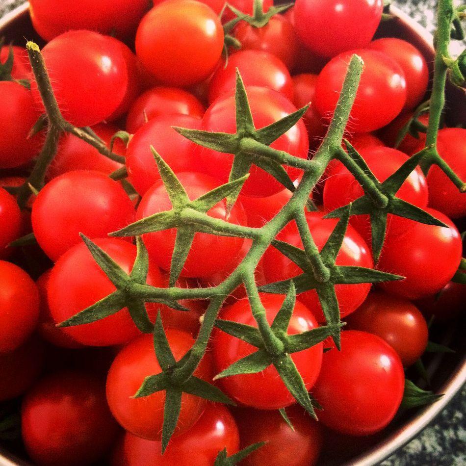 Red Freshness Healthy Eating Food Juicy Nature Tomatos Pomodoro Rosso Verdura Mangiareitaliano