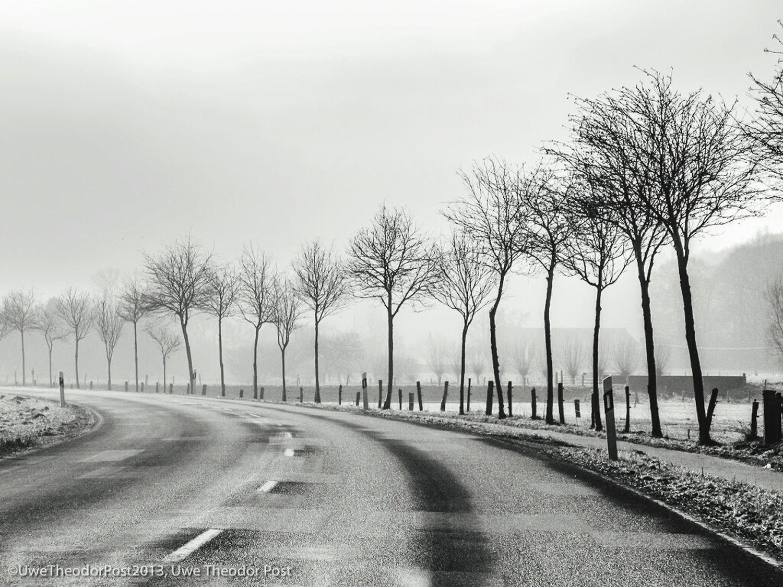 Straße am Niederrhein im Winter . Dieses Foto ist in der Kulturkneipe Schwarzer Adler in Rheinberg bis Juni ausgestellt. Schwarzweißfotografie Black & White Streetphotography Drivebyphotography Schreibmalkunst