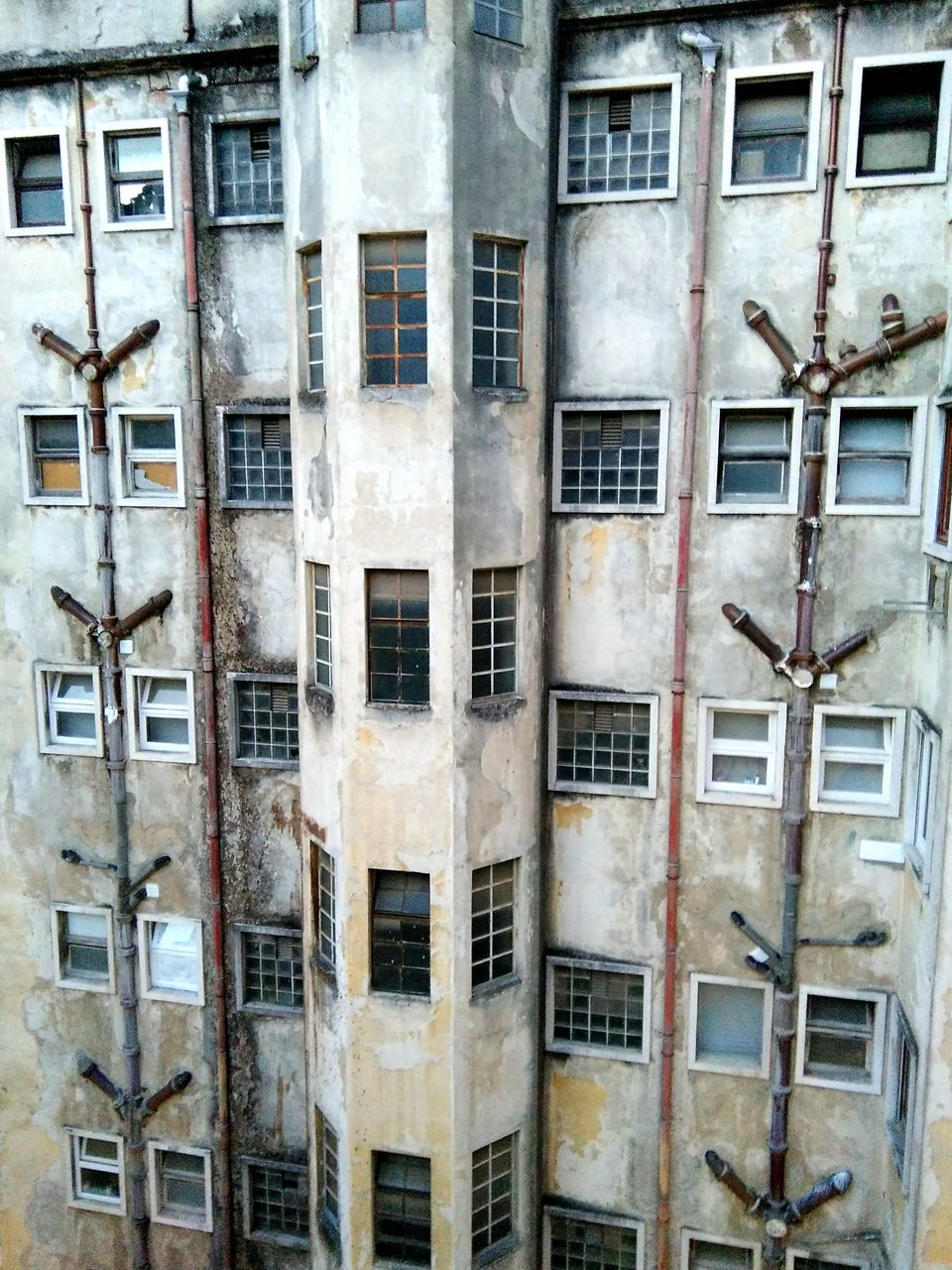 window, building exterior, architecture, no people, built structure, day, abandoned, outdoors, residential building, bird, backgrounds, large group of animals, close-up