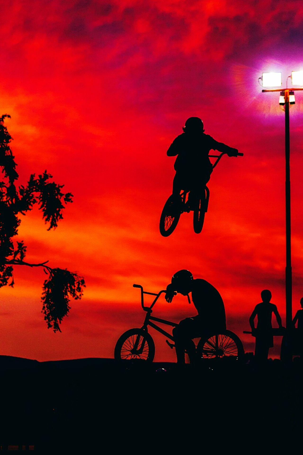Bmx Bicycle Sunset Tree Silhouette Cycling Sky Transportation City Riding Dramatic Sky Cloud - Sky Full Length Nature Outdoors People