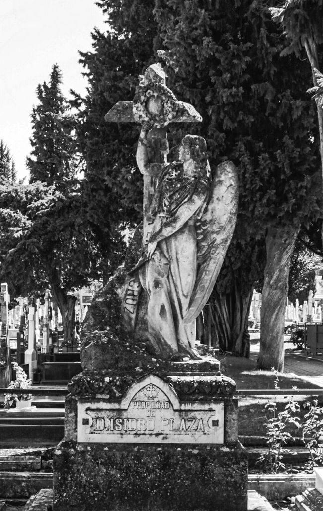 Cementeriosdeespaña Cementerio Cementerios  Paz Cemetery_lovers Cemeterybeauty Cemetery Series Cemetery_shots
