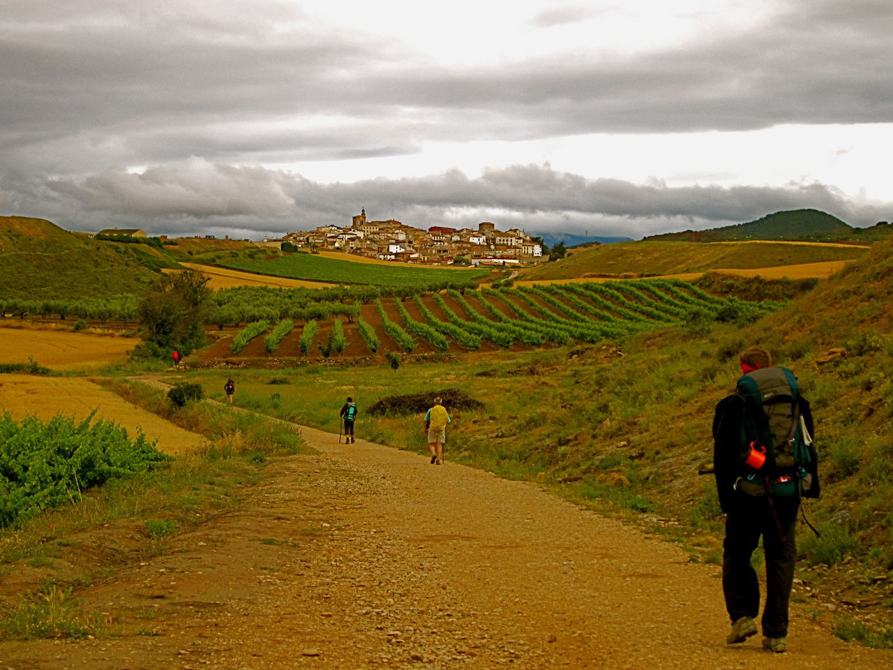 The Tourist Hot Backpackers Spain ✈️🇪🇸 Walking Summertime El Camino De Santiago Vineyard Walking Path Countryside