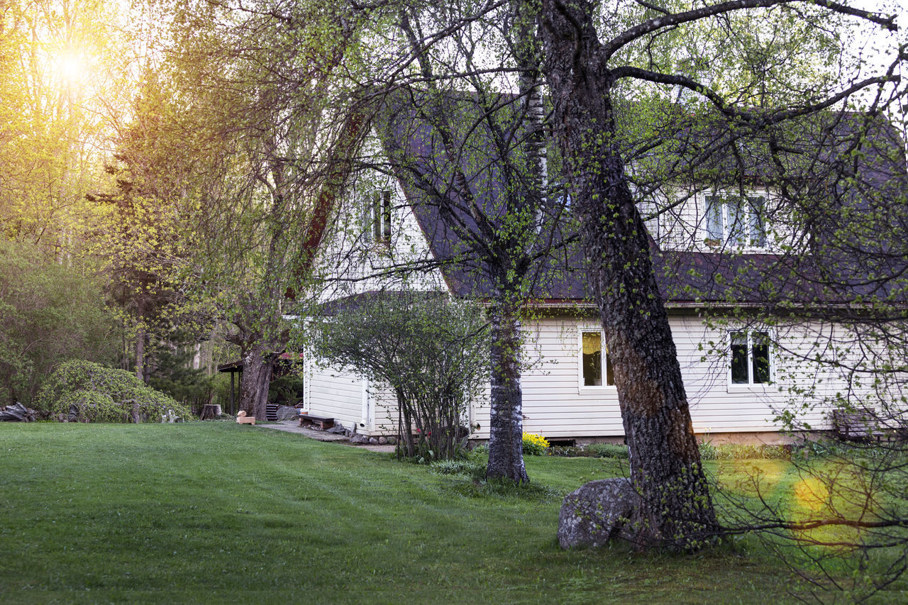 Building in Estonia. Countryside, homestead wirh garden, lawn, trees. Architecture Beauty In Nature Branch Building Country Countryside Day Evening Grass Green Home Homestead House Morning Nature No People Outdoors Rural Scene Scenics Sun Sunlight Sunlit Tranquility Tree Tree Trunk
