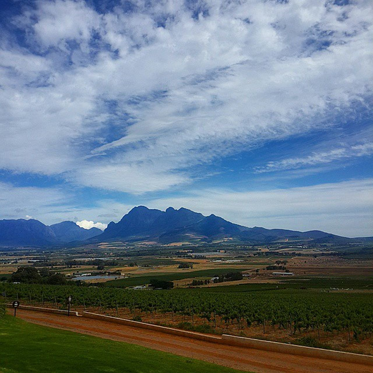 This place @spiceroutepaarl Vscocam VSCO Spiceroute Winefarm vineyard brewery distillery dayout daydrunk SouthAfrica ILoveSA Summer CapeTown LookItsAMountain2014 holiday Paarl nofilter scenic cloud clouds bluesky cloudporn pretty instahappy happiness instanature