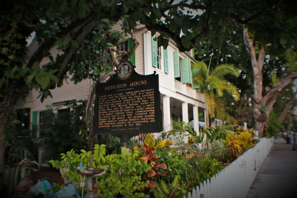 Key West Street Photography Key West Living Tranquility Residential District Museum Streets Of Key West Southern Charm Southern Living