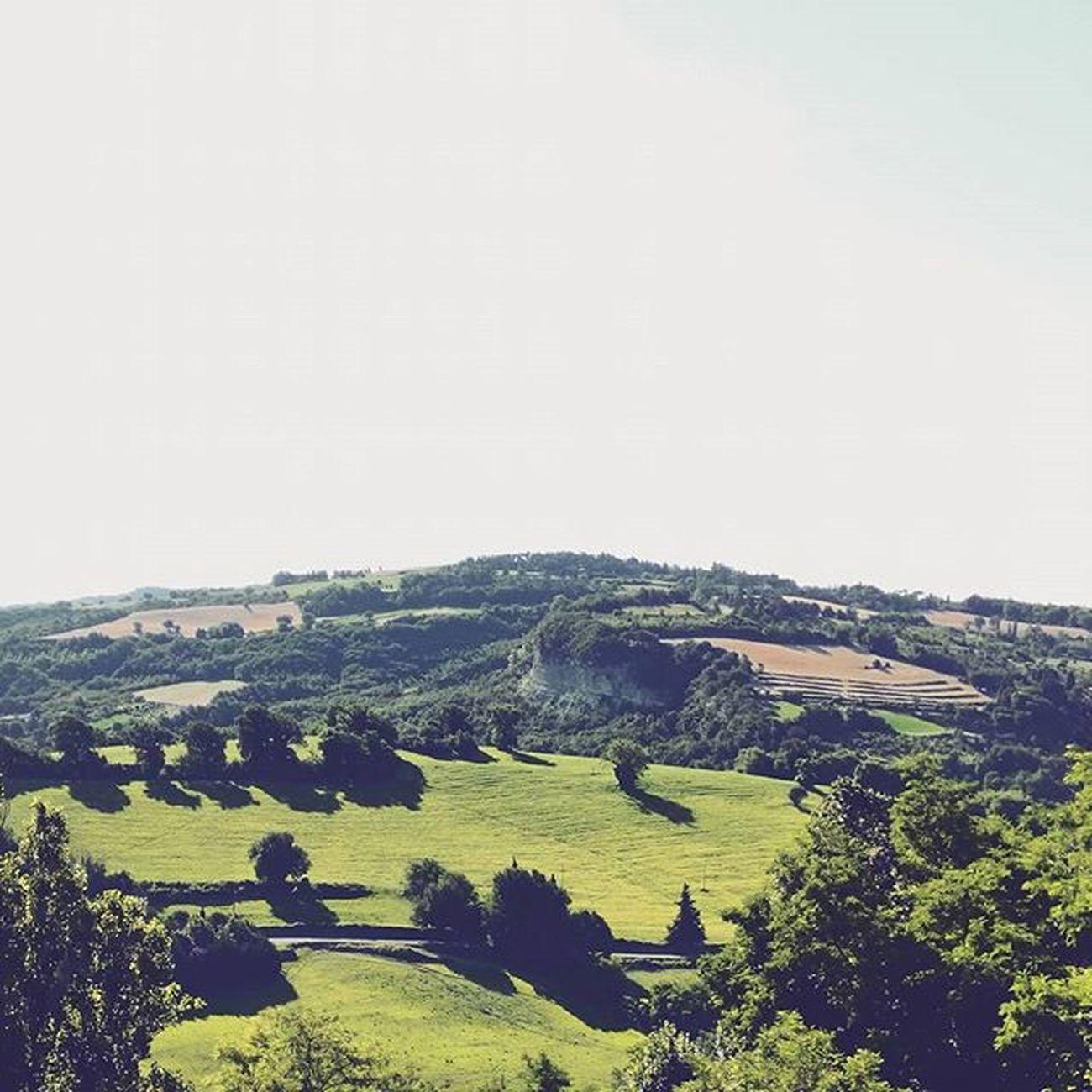 Cara Urbino, non vedrò più le tue colline ad ogni risveglio. . Urbino Montefeltro Marche Marcheforyou Collinemarchigiane Paesaggio Whatitalyis Italy Nature Landscape Sky Trees
