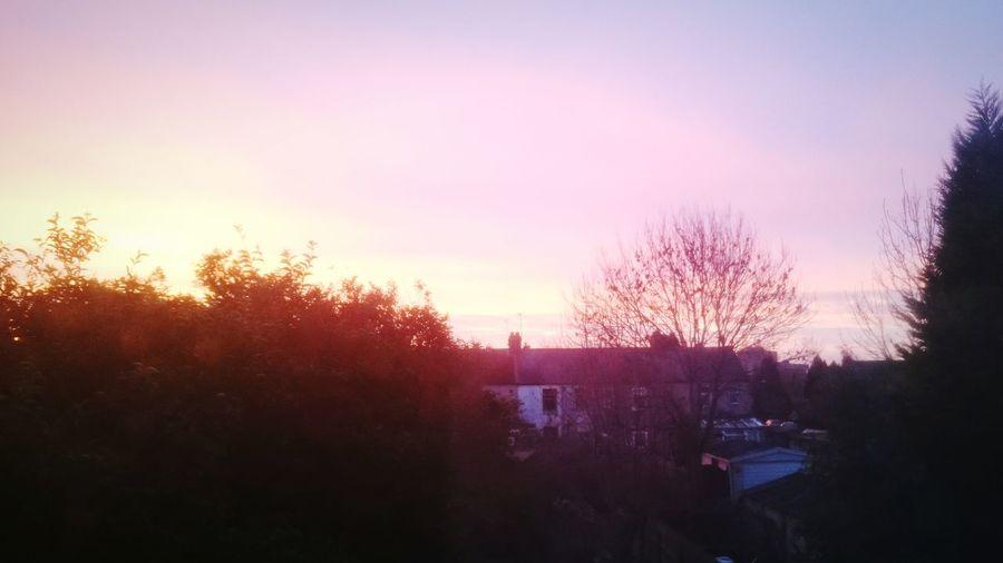 Sunrise outside my home