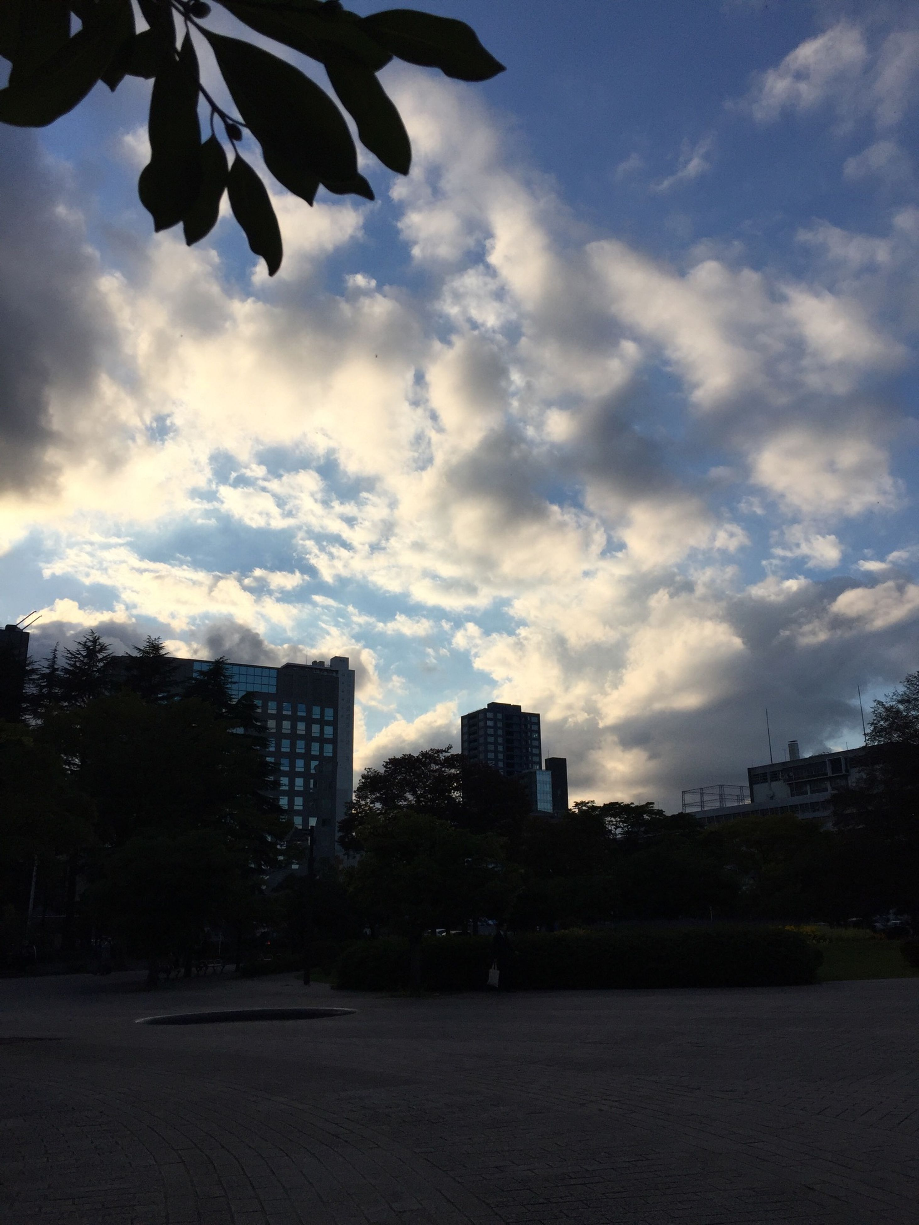 sky, building exterior, architecture, built structure, city, cloud - sky, tree, cloud, cloudy, cityscape, outdoors, skyscraper, growth, modern, no people, building, dusk, residential building, silhouette, day