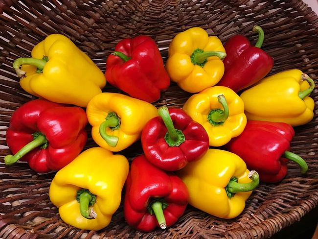 Bell Pepper Yellow Freshness Yellow Bell Pepper Multi Colored High Angle View Food And Drink Red Bell Pepper Food Vibrant Color Variation Indoors  Healthy Eating Red Vegetable Choice Large Group Of Objects Abundance Collection No People Basket