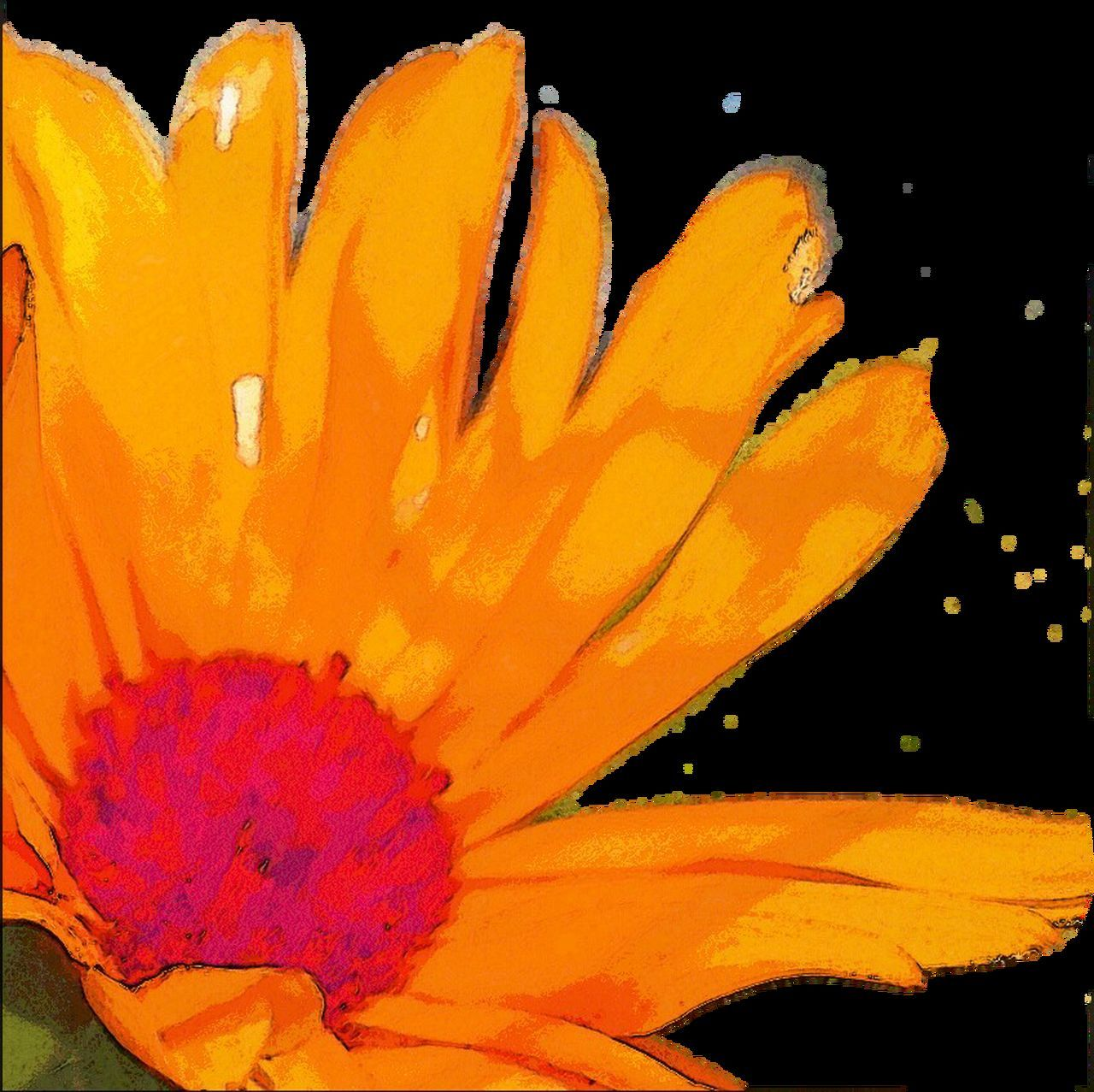 Sketch Sketch Art Extreme Edit Extreme Edits Editing Photos Floral Flower Orange Flowers Painted Flower Painted Flowers Graphic Art Graphic Flower Flowerporn Flowers Flowers, Nature And Beauty Flower Porn Flowers_collection Black Background Black Backdrop Orange Color Orange Flower Big Flower Big Flower!! Big Flower Sketches