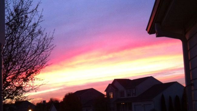 Color Palette Sky Sunset Built Structure Tree House Orange Color Beauty In Nature Outdoors Nature Multi Colored Cloud - Sky Romantic Sky Building Exterior High Section Dramatic Sky Beautiful Day Delaware Beauty In Nature