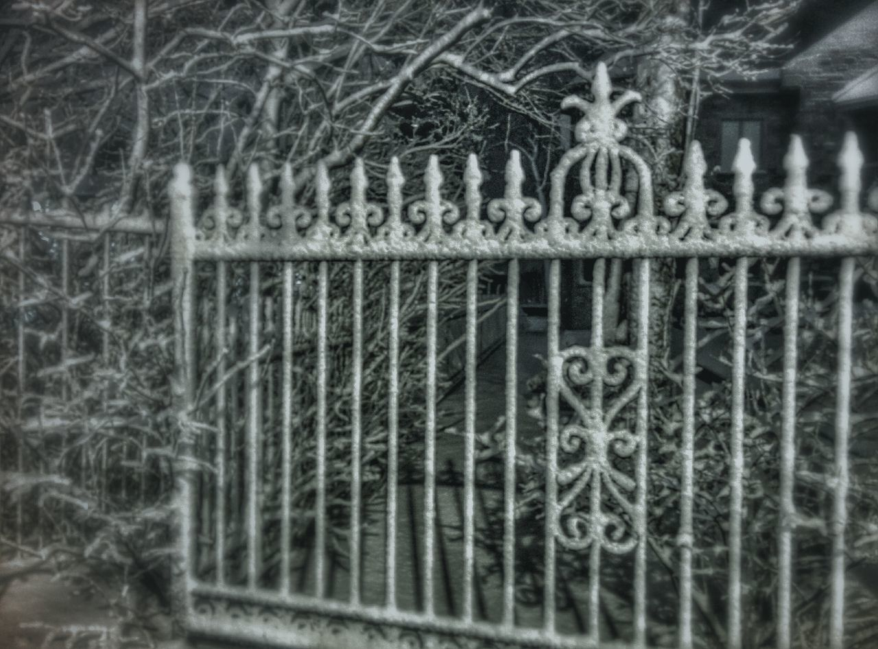 Fences Winter Morning Snow Night Photography
