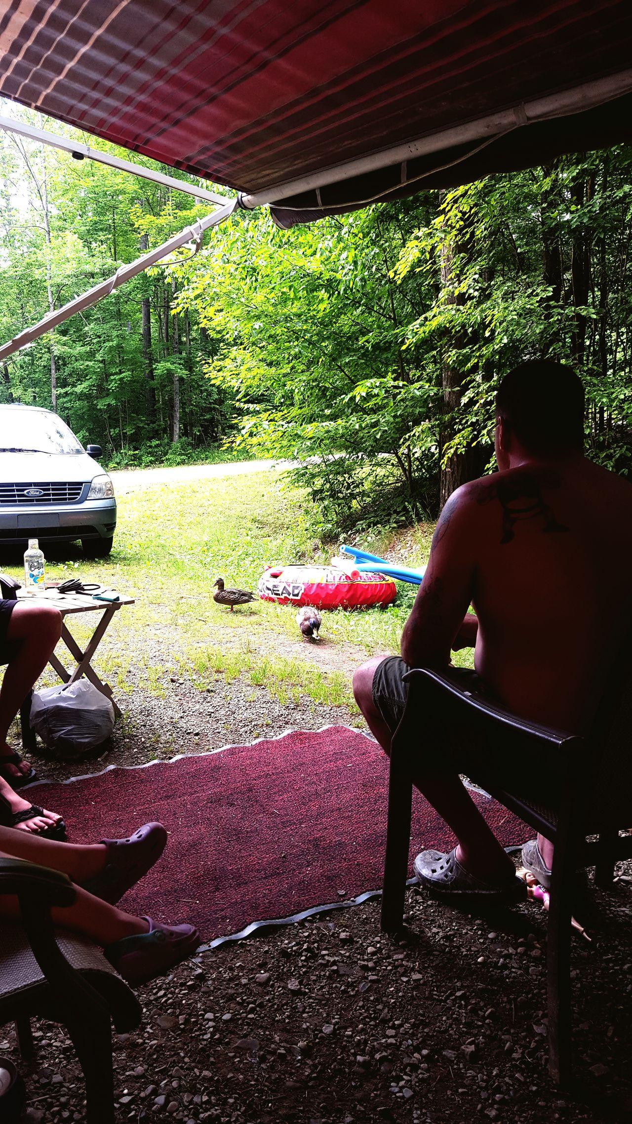 Allegheny National Forest Red Bridge Campground First Eyeem Photo