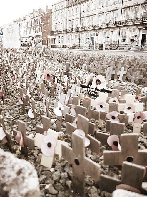 First World War Memorial War Memorial Picture Moment Crosses Poppies  Killing Fields Sacrificed Lives Taken Casualties Of War