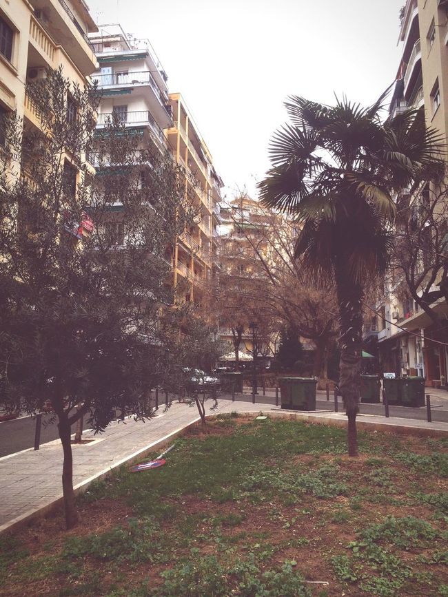 Zcrew Thessaloniki Skg Working Park Downtown Cloudy Day Walking Wonderful Greece green in dark.