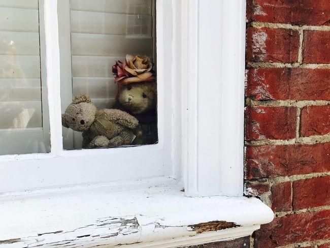 Window Cute Windsor